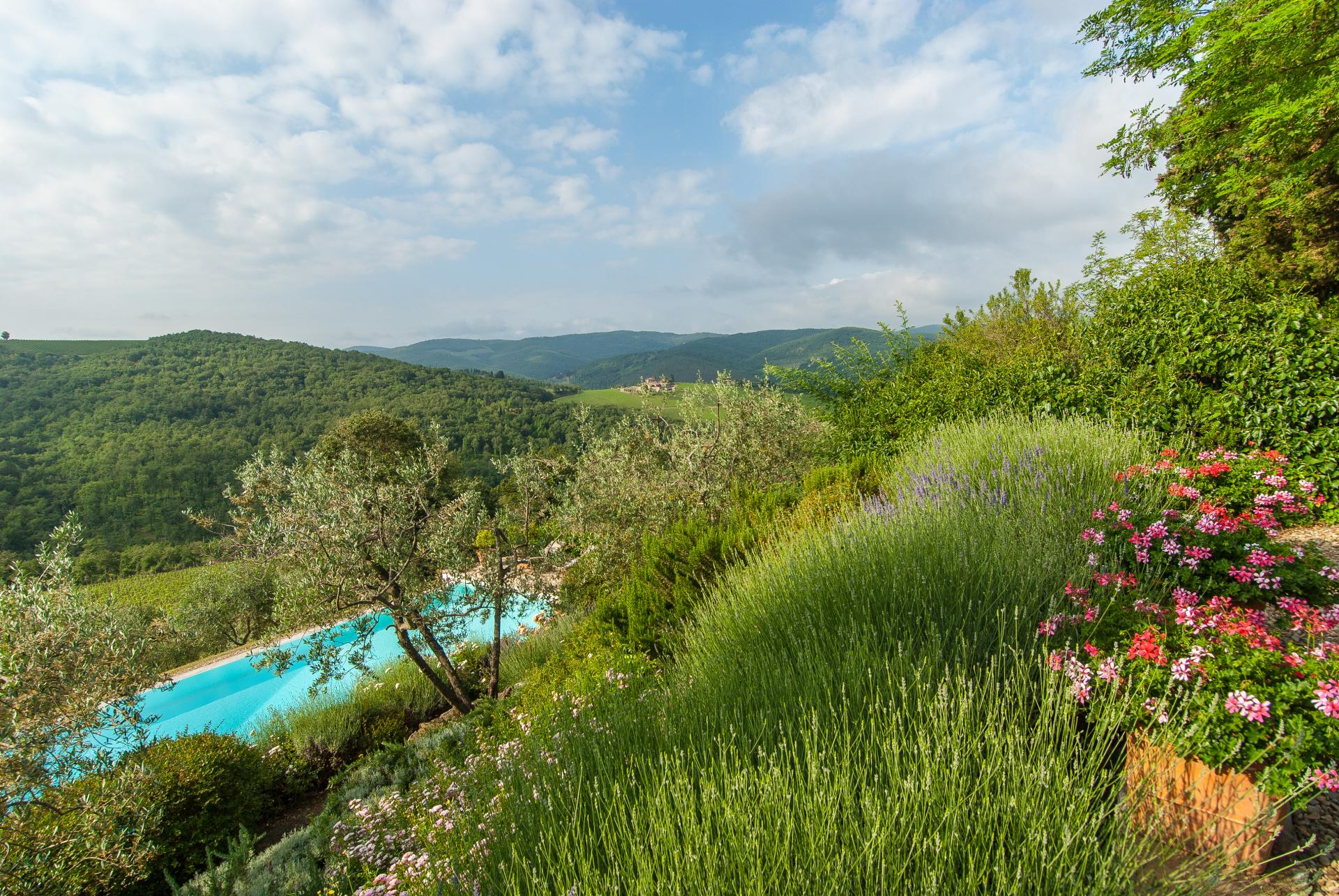 Garden and outdoor pool, Casa Vigneti, Tuscany, Panzano in Chianti.