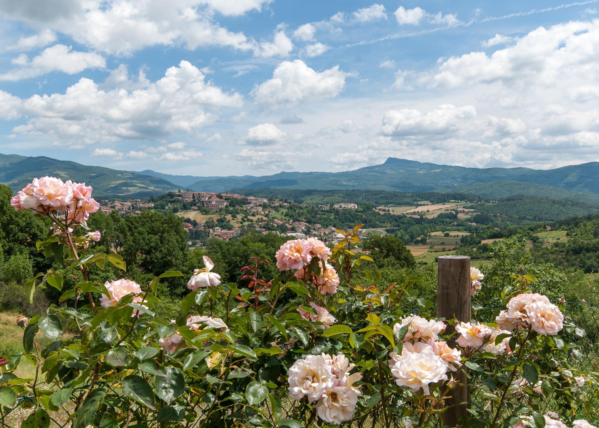 Villa Views, Il Casentino, Poppi, Tuscany.
