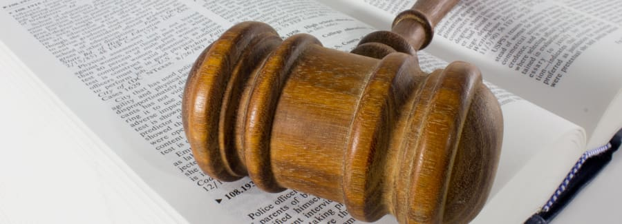Gavel On a Legal Text