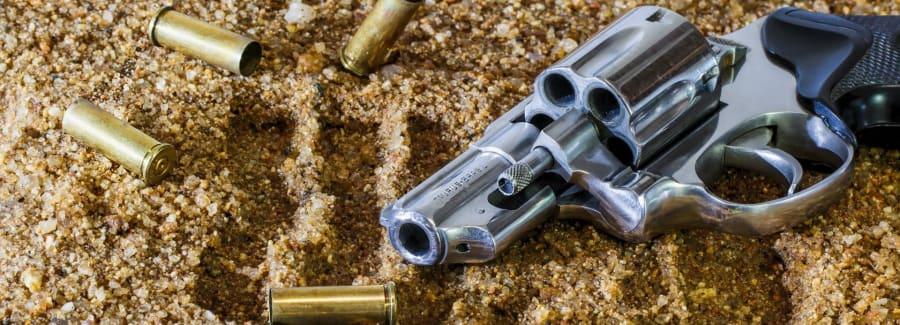 firearm-revolver-bullet-gun-53219 (2)