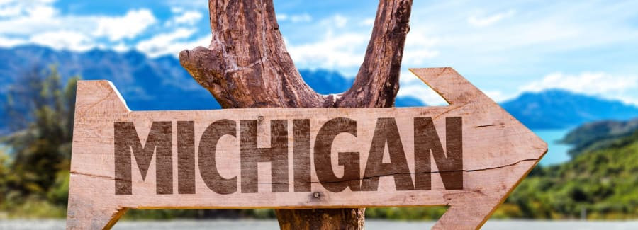 wood sign pointing to michigan
