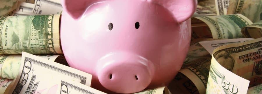 Piggy bank on dollars lying on the desk