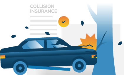 Hitting A Deer Does Insurance Cover It What To Do Before And After