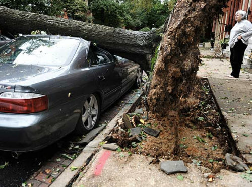 This car was crushed by a tree uprooted by Hurricane Irene in Baltimore.