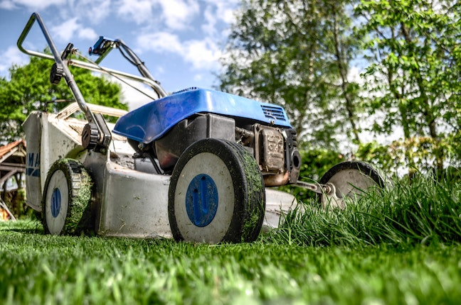 close up picture of mower cutting grass