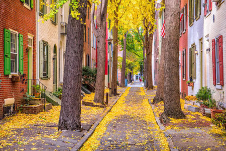 Philadelphia, Pennsylvania alley in fall with colorful brownstone houses and yellow leaves.
