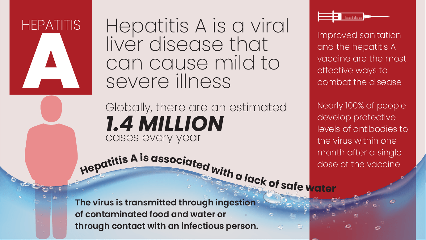Hepatitis A Fact Sheet