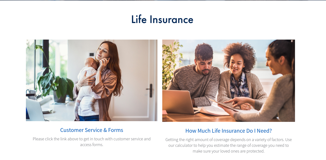 AIG Life Insurance Page