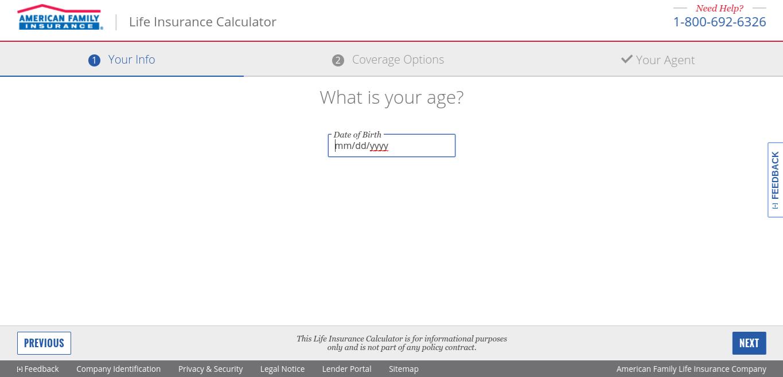 Life Insurance Calculator Sample Screen - American Family