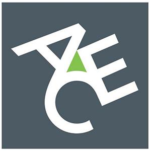 Ace Insurance Company