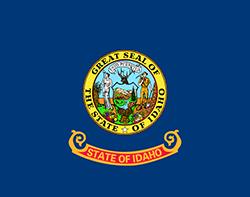 STATE NAME State Flag