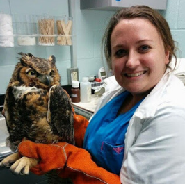 Sara Ochoa is an exotic veterinarian and a veterinary consultant for DogLab. For the past five years she has been treating cats, dogs, and exotic animals in Texas.