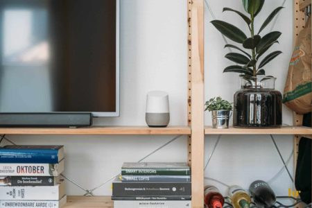 shelves with plant, television, smart home, books, wine bottles