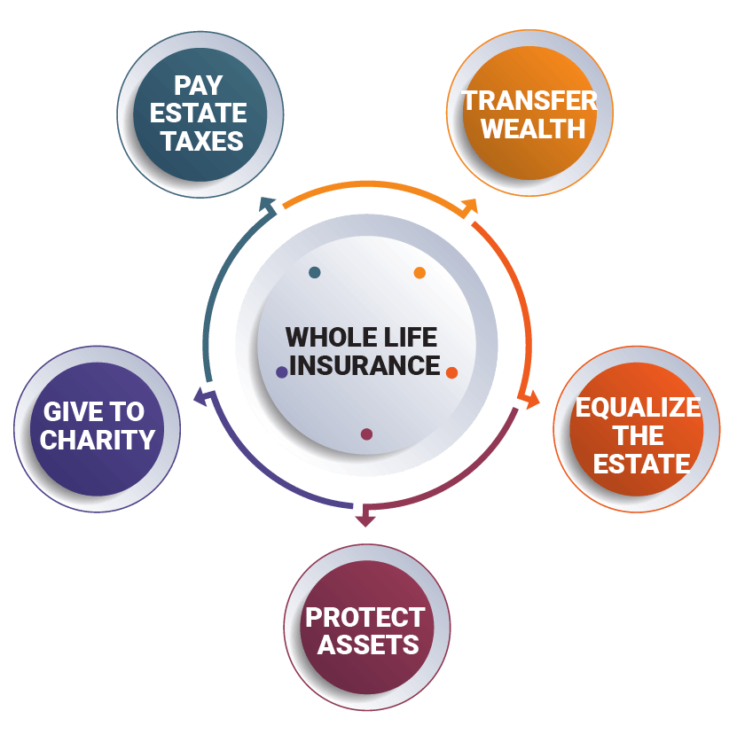 The Role of Whole Life Insurance in Estate Planning