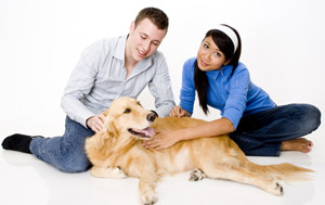 Most Insured Pets: #1 Dogs