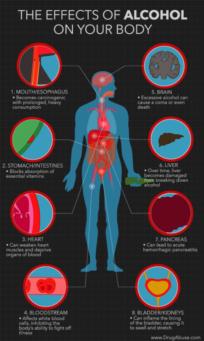Diagram of the Effects of Alcohol on the Body