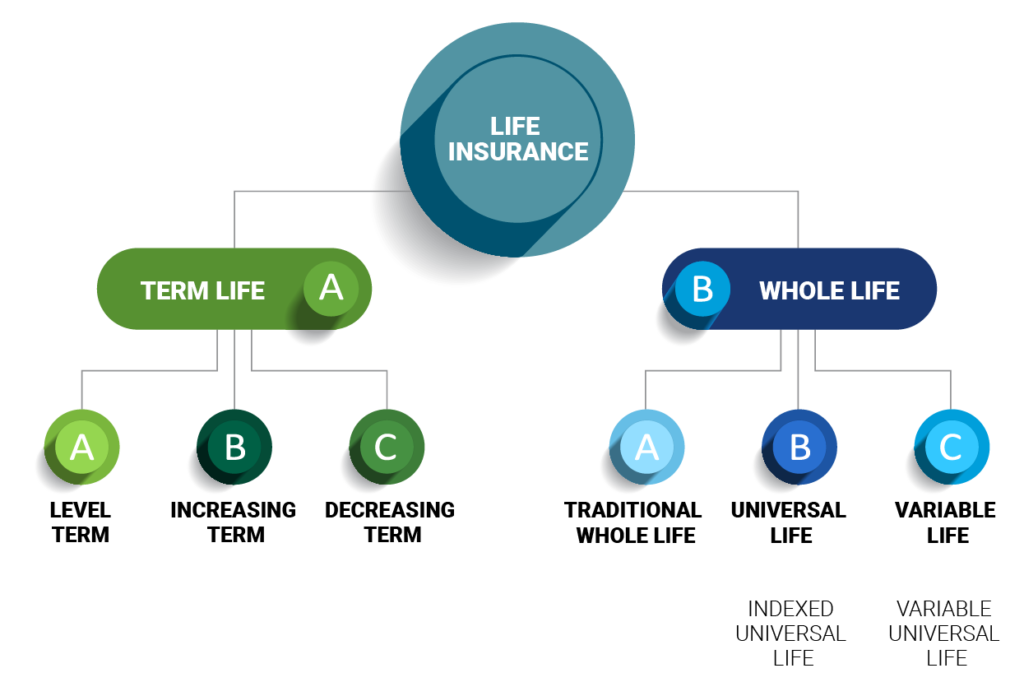 Types of Term Life and Whole Life Insurance Plans