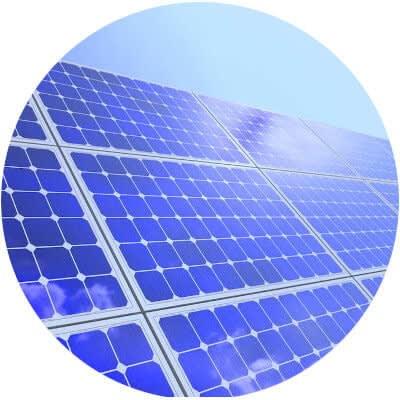 white rose energy renewable electricity
