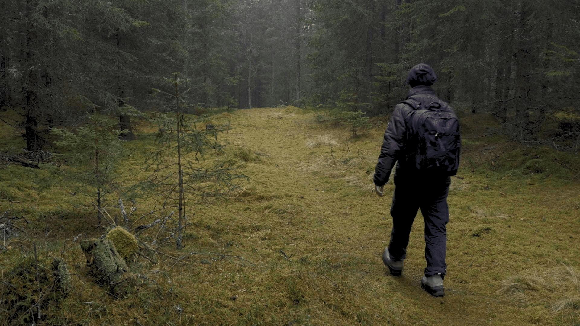 videoblocks-man-walking-through-a-dark-forest_sdzdloshe_thumbnail-full11