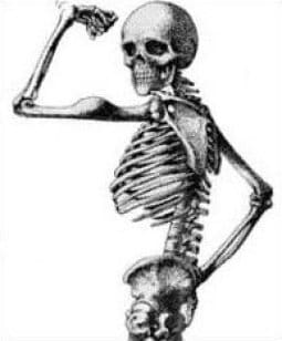 bonestrength