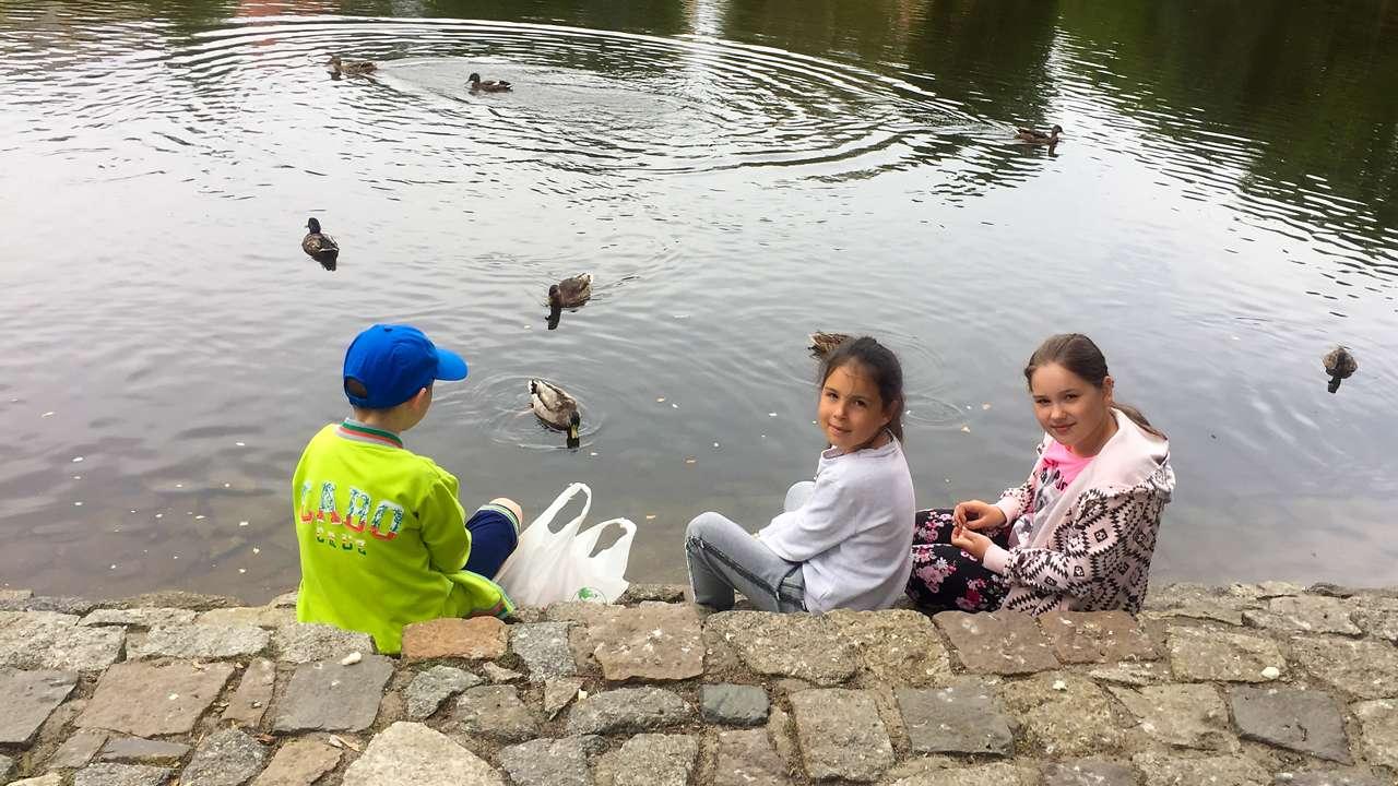 Na brzegu stawu w parku. Dzieci karmi膮 kaczki.