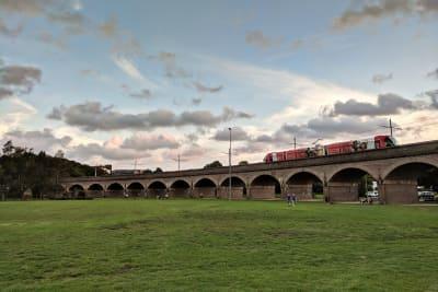Sydney L1 Dulwich Hill line