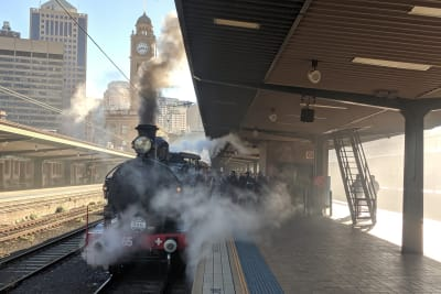 Hornsby Steam Express