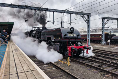 AD60 class locomotive