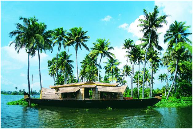 Boating in Kumarakom Backwater Lake