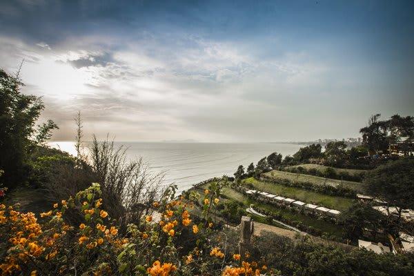 Lima Coastline with flowers