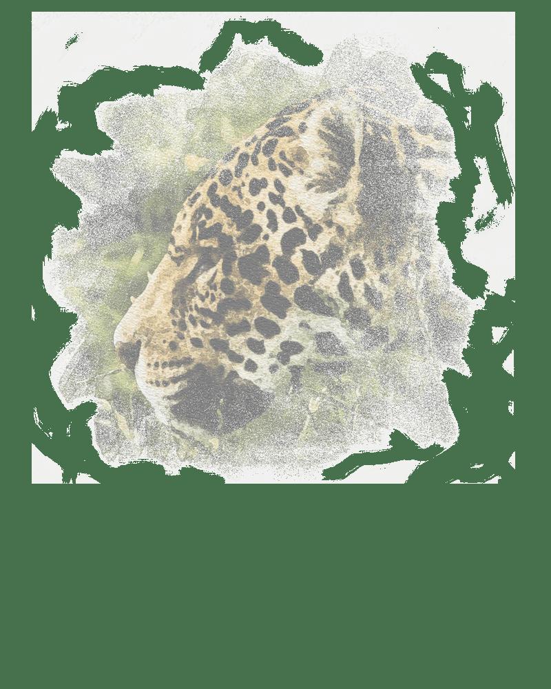 A sketch of a jaguar