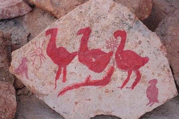 Painted Rock Atacama Desert Flamingo
