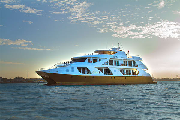 Elite luxury galapagos cruise