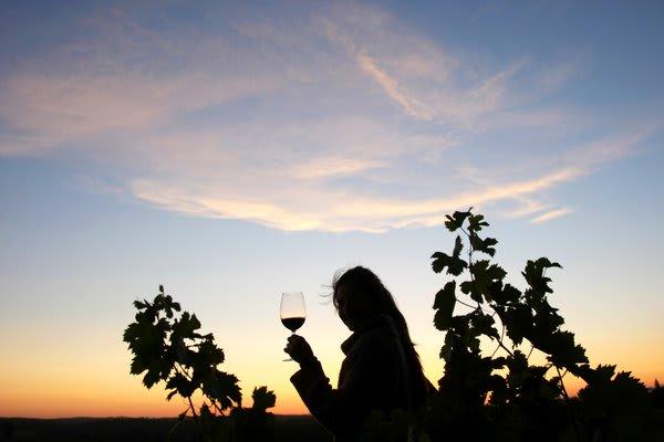 Evening Glass of Wine Mendoza