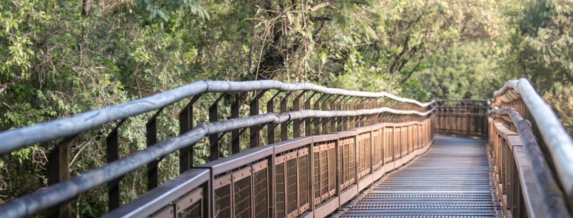 Boardwalk Iguazu Falls