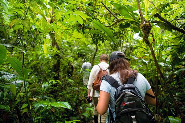 Jungle Trekking Peru Amazon