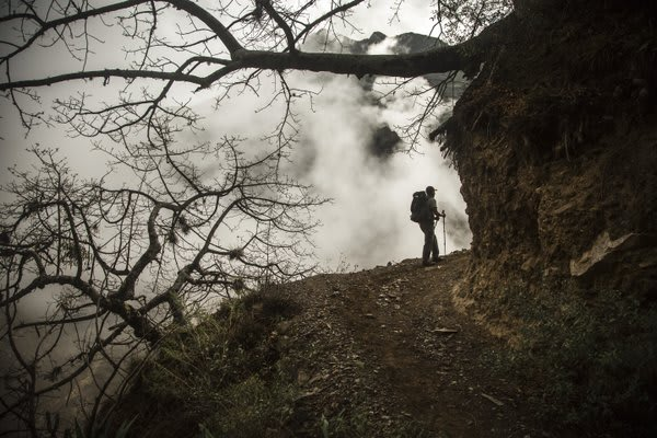 Man Hiking in the cloud forest