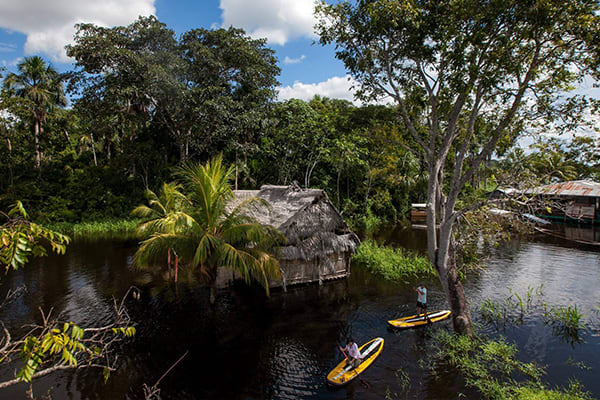 people paddle boarding in the amazon