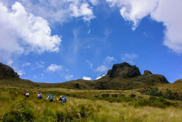 people hiking through high altitude grasslands