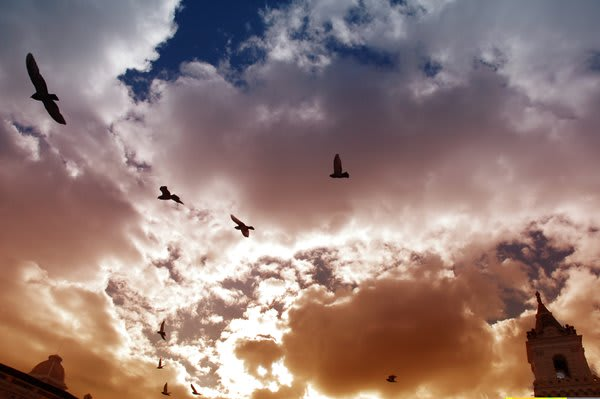 Quito Sky with birds flying