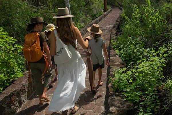 Family walking towards fun excursion