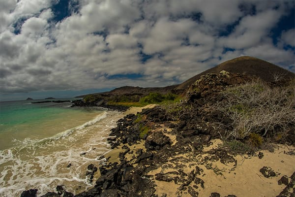 rocky beach in the galapagos
