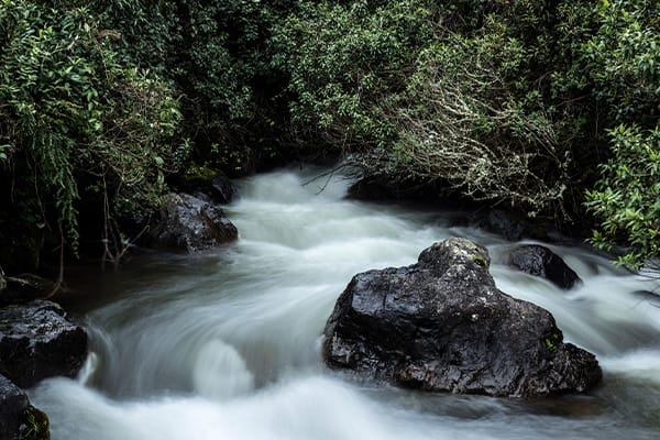 flowing river papallacta outside Quito