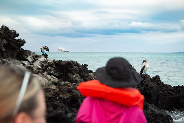 On Excursion Galapagos Boat