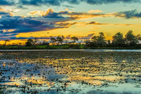 manaus calm water sunset