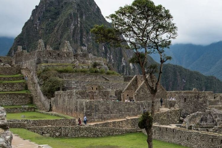 Machu Picchu Peru Terraces