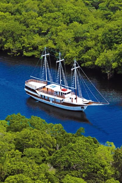 Expedition Cruise on the Amazon River