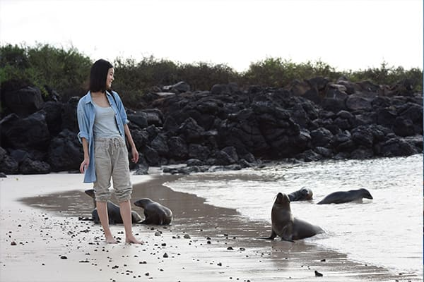 Woman observing sea lions Galapagos