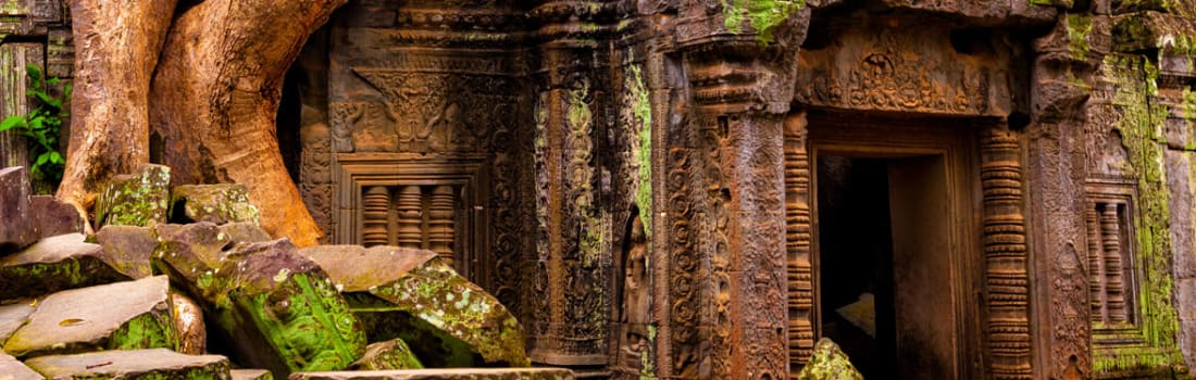 An Angkor temple overgrown by a tree
