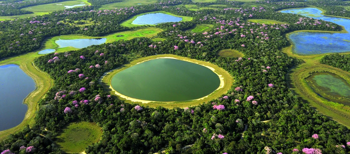 Aerial Views The Pantanal, Brazil